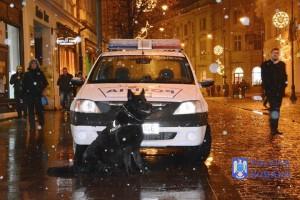 politia caine ninsoare