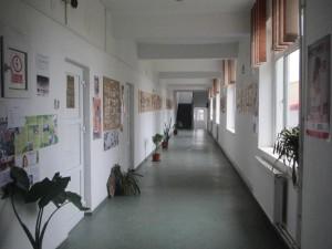 Campus Liceul Agricol Oravita - Scoala de Arte si Meserii (1)