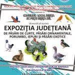 afis-expo-resita-2016